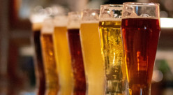 lineup of glasses containing irish style beer