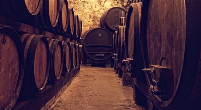 Cellar full of wine barrels.